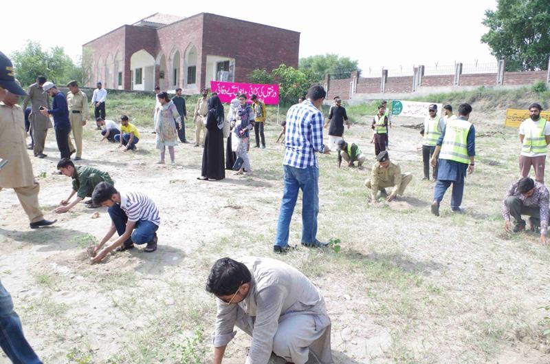 Plant for Pakistan