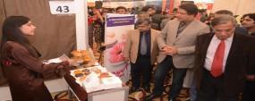 Entrepreneurship to help uplift country: Raza Ali Gillani